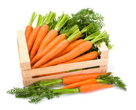 Carrot roots (Daucus carota ssp. sativus) in wooden crate Stock Image