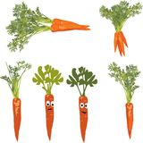 Carrot with a sad and a cheerful face. Vector illustration of a carrot with a sad and a cheerful face, bunch of carrots, a group of images Royalty Free Stock Photography