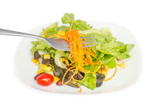Carrot salad on fork Stock Images