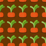 Carrot seamless pattern. Plantation carrots  background. G. Arden with vegetables. Retro fabric ornament Stock Photo