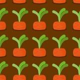 Carrot seamless pattern. Plantation carrots  background. G Stock Photo