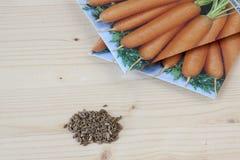 Carrot Seeds Stock Photos
