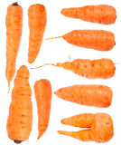 Carrot set isolated Stock Images