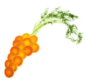 Carrot shape made of greens and carrot's pieces Royalty Free Stock Photo