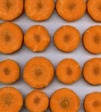 Carrot slices Royalty Free Stock Photography