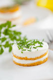 Carrot Snack Appetizer Royalty Free Stock Photos