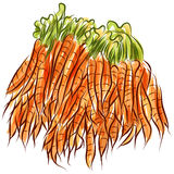 Carrot Stack Stock Image