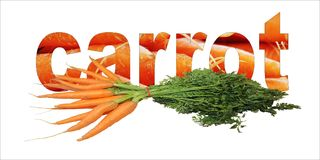 Carrot  text with lots of carrot vegetables. Carrot  text with lots of orange carrot vegetables Stock Photos