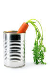 Carrot in Tin Can Royalty Free Stock Images