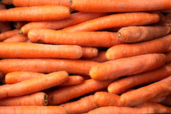 The carrot Royalty Free Stock Photo