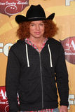 Carrot Top Stock Image