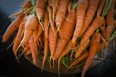 Carrot Top View Stock Image