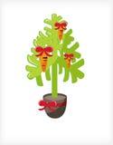 Carrot Tree Royalty Free Stock Photo