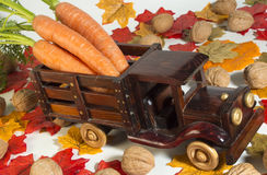 Carrot Truck. Toy truck load of freshly picked carrots royalty free stock photo