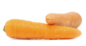 Carrot tubers Royalty Free Stock Photos