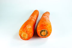 Carrot. Two carrots in white background Royalty Free Stock Images
