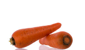 Carrot. Two Carrot on white background royalty free stock photo