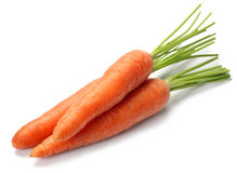 Carrot vegetable Stock Image