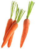 Carrot vegetable Stock Photo