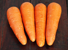 Carrot vegetable Royalty Free Stock Photography