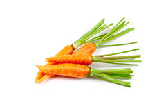 Carrot vegetable with leaves Royalty Free Stock Photo