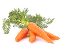 Carrot vegetable with leaves Royalty Free Stock Image