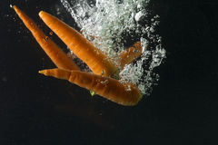 Carrot in water on a black background Royalty Free Stock Images