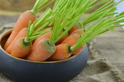 Carrot in wicker bowl on sacking on wooden. Table Stock Image
