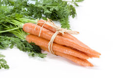 Carrots Stock Photo