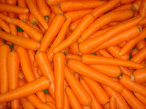 Carrots. After harvest Stock Photos