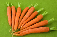 Carrots. Fresh young carrots on green background Stock Photo