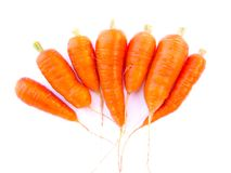 Carrots. Fresh carrots on white background royalty free stock images