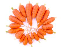 Carrots. Fresh carrots on white background royalty free stock photos