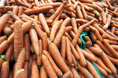 Carrots. Close up to a bunch of carrots Royalty Free Stock Photography