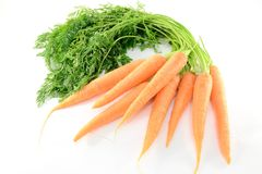 Carrots. Fresh carrots isolated on white background Royalty Free Stock Image