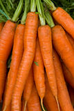 Carrots. Some orange carrots in a box Stock Photos