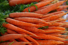 Carrots - 2 Royalty Free Stock Photo