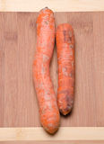 Carrots. Natural carrots freshly picked from the garden Royalty Free Stock Photography