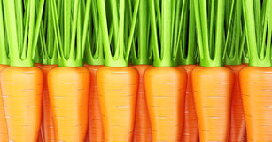 Carrots Stock Image