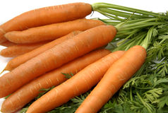 Carrots. Bunch of carrots with leaves Stock Photo