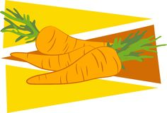 Carrots. A stylised drawing of a bunch of carrot vegetables Stock Image