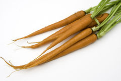 Carrots. On a seamless  white background Royalty Free Stock Photos