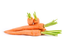 Carrots. Herd isolated on white Royalty Free Stock Image
