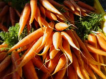 Carrots. Vegetables Royalty Free Stock Image