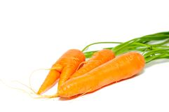 Carrots. Isolated on the white background Stock Image