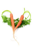 Carrots Arranged in Heart Shape Stock Images