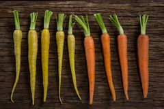 Carrots arranged on wooden table Royalty Free Stock Photography