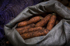 Carrots in a bag. On the counter in the sale Stock Photos