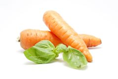 Carrots and basil leaves Royalty Free Stock Photography