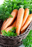 Carrots in basket Stock Images